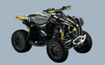Can-Am Renegade 800 EFI X: подробнее